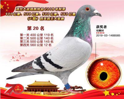 C�M四�P��王20