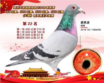 C�M四�P��王22