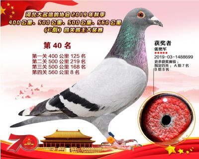 C�M四�P��王40