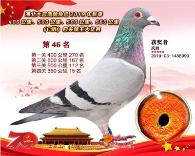 C�M四�P��王46