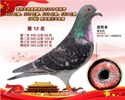B�M四�P��王12