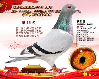 B�M四�P��王15