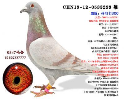 芬尼卡5000  �捎鹄戏N��作育 三�P�w巢