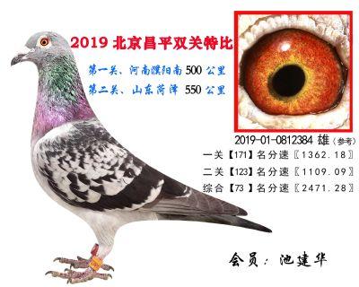 池建华.73.2019-01-0812384 雄
