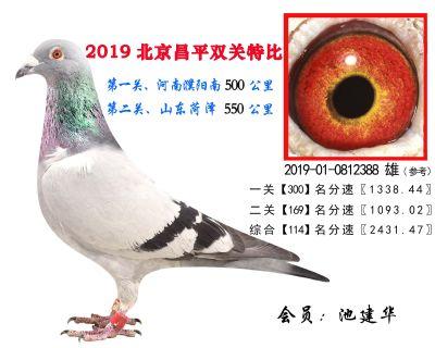池建华.114.2019-01-0812388 雄