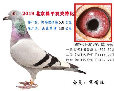 葛增旺,59,2019-01-0813793 雌