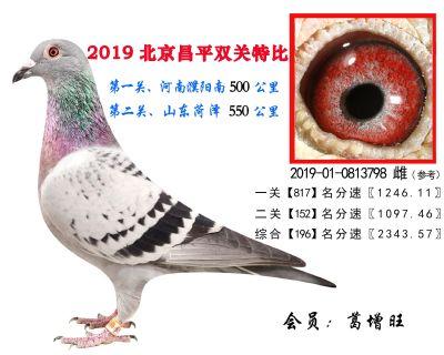 葛增旺,196,2019-01-0813798 雌