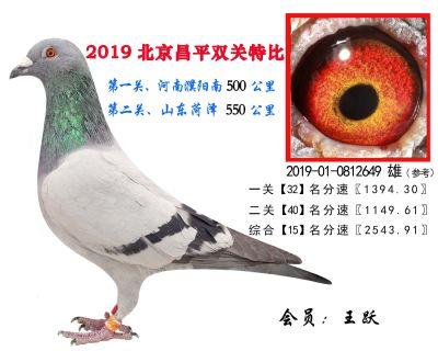 王跃.15.2019-01-0812649 雄