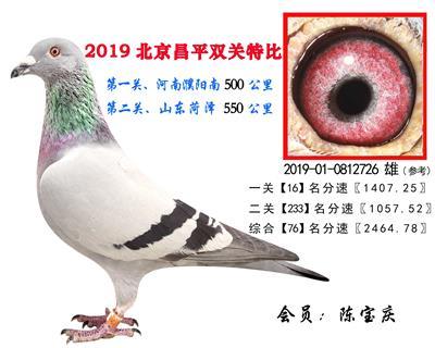 陈宝庆.76.2019-01-0812726 雄
