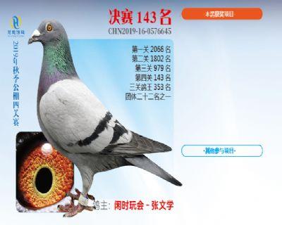 威力慧能决赛143名