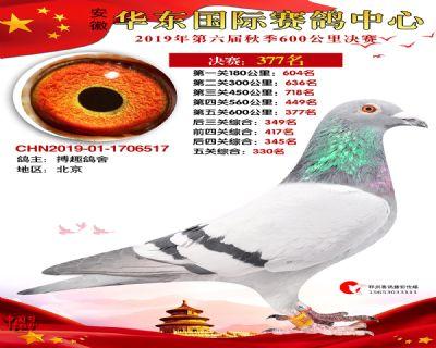 华东377