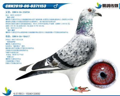 噶斯�D-魅影王子153