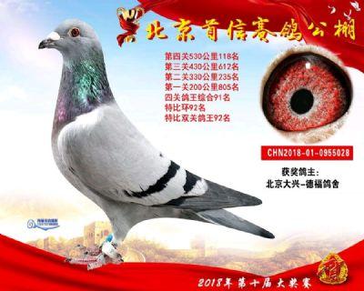 北京首信���公棚�Q�118名