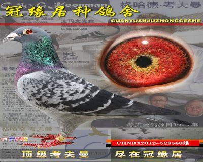 台湾560