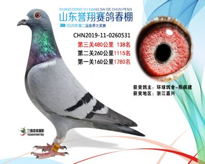 2020年誉翔138