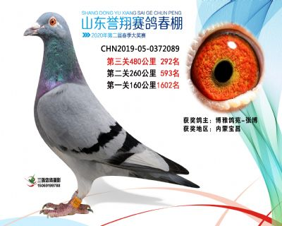 2020年誉翔292