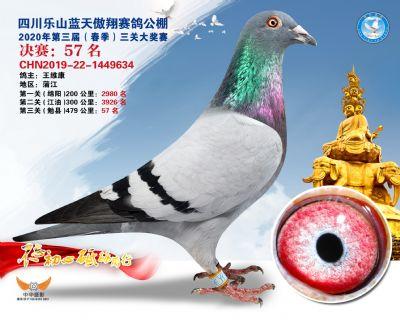 蓝天傲翔决赛57名