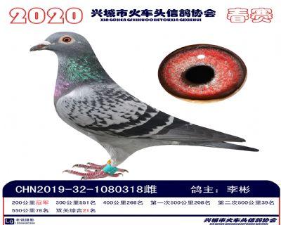 �p�P21李彬