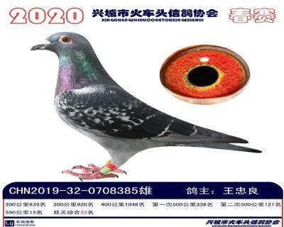 �p�P22王忠良