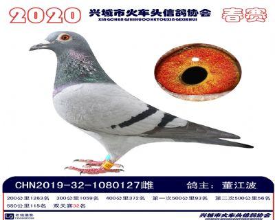 �p�P32董江波