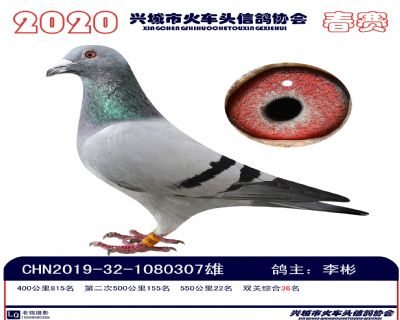 �p�P36李彬