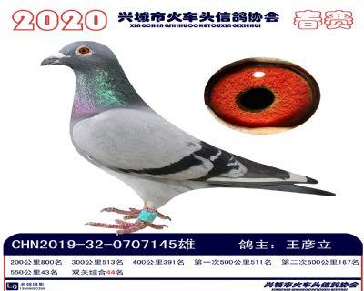 �p�P44王�┝�