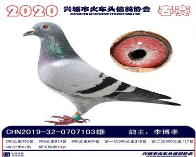 �p�P49李博孝
