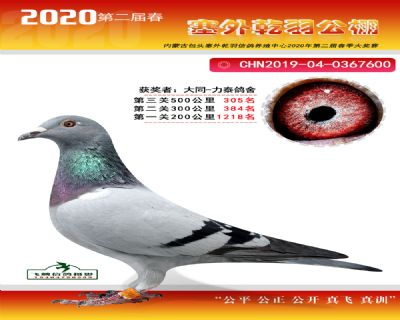 塞外乾羽�Q�305名