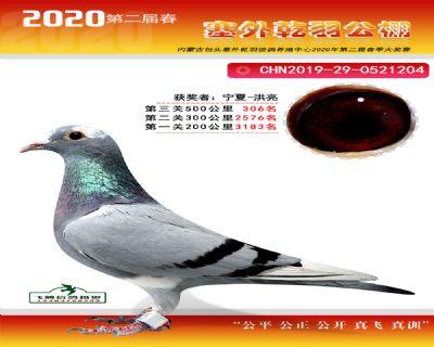 塞外乾羽�Q�306名