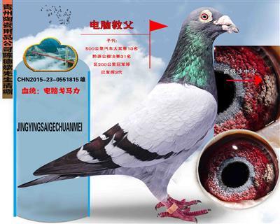 贵州陶瓷用品公司陈德斌先生(电脑教父)