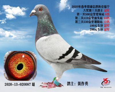 霞浦���f三�P��王冠�