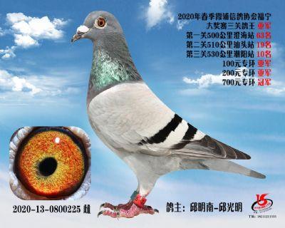 霞浦���f三�P��王���
