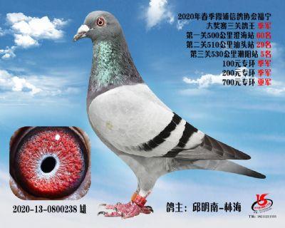 霞浦���f三�P��王季�
