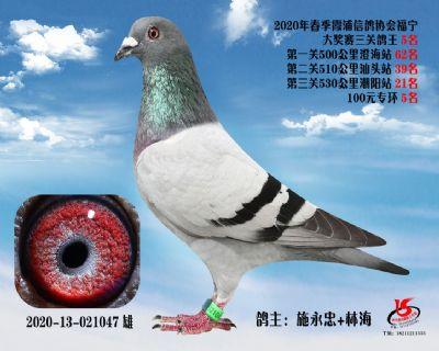 霞浦���f三�P��王5名