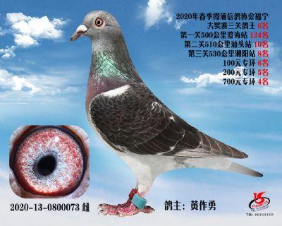 霞浦���f三�P��王6名
