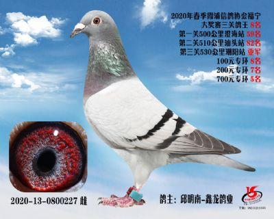霞浦���f三�P��王8名