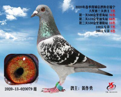 霞浦���f三�P��王7名
