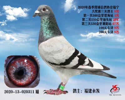 霞浦���f三�P��王9名