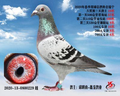 霞浦���f三�P��王10名