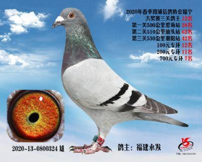 霞浦���f三�P��王12名