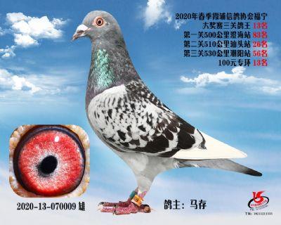 霞浦���f三�P��王13名