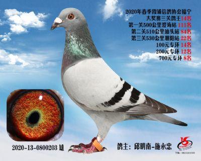 霞浦���f三�P��王14名
