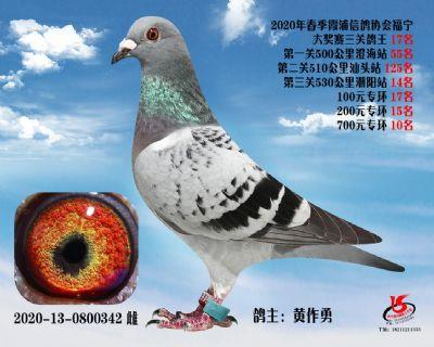 霞浦���f三�P��王17名