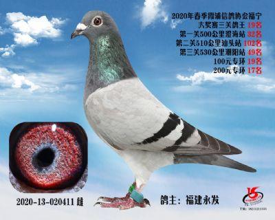 霞浦���f三�P��王19名