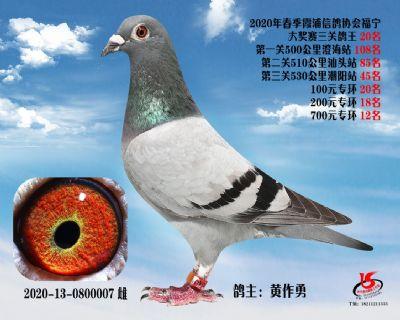霞浦���f三�P��王20名