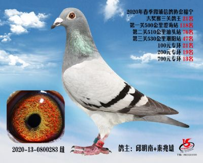 霞浦���f三�P��王21名