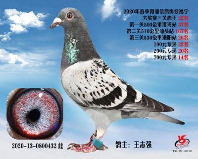 霞浦���f三�P��王22名