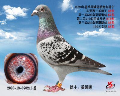 霞浦���f三�P��王33名