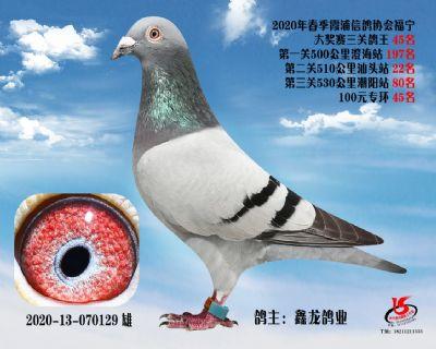 霞浦���f三�P��王45名