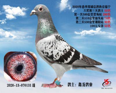 霞浦���f三�P��王53名